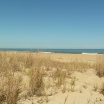 Beach Rentals in Virginia Beach