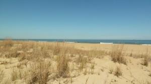 Beach Rentals in Virginia Beach