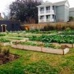 Commune-Garden